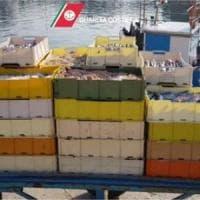 Bari, sequestrata partita di pesce: i clienti lo pagavano a caro prezzo ma non era fresco
