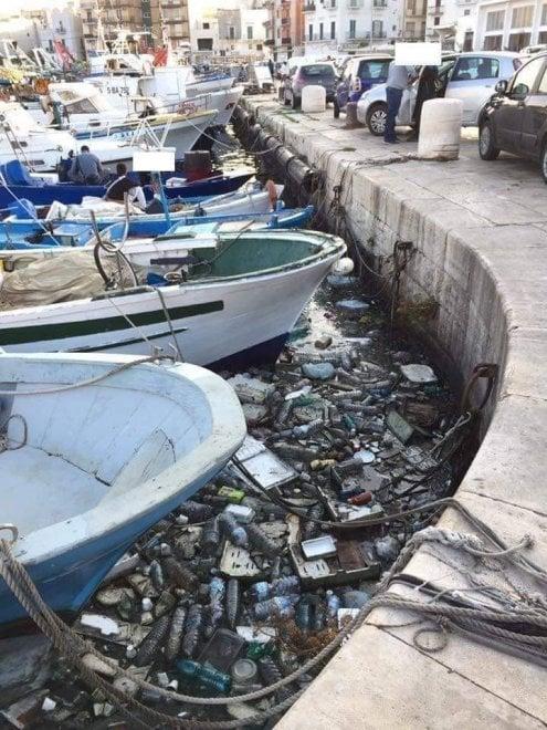 Un mare di plastica nel porto di Mola di Bari: la foto è inquietante