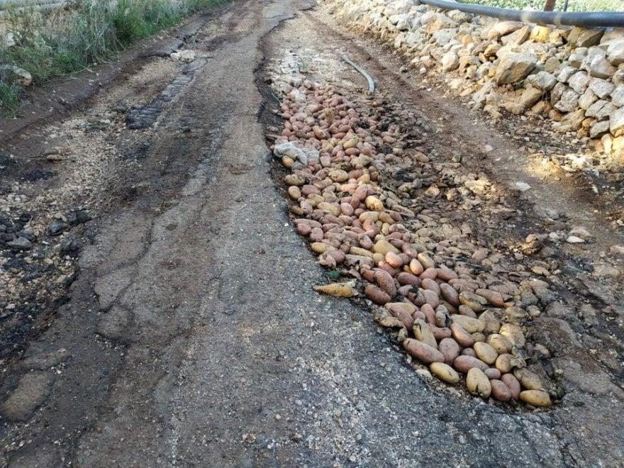Bari, buche sulla strada coperte con le patate