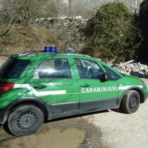 Taranto, raccolgono funghi velenosi: due persone salvate da un controllo dei forestali