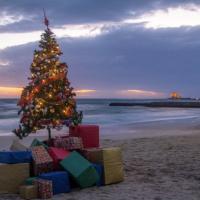 Salento, l'albero di Natale è in riva al mare