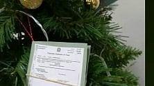 Sull'albero di Natale    i fascicoli dei processi