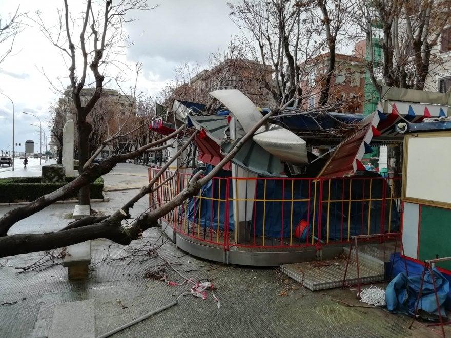 Bari, albero precipita su una giostrina e la distrugge