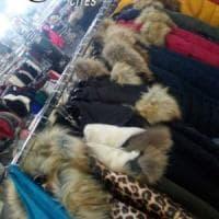 Lecce, sequestrati 50 capi di pelliccia: