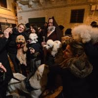In chiesa con cani e gatti: a Bari vecchia la benedizione degli animali