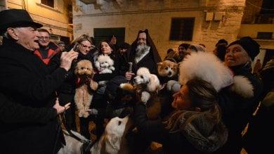 Foto  Tutti in chiesa con cani e gatti  a Bari vecchia la benedizione degli animali