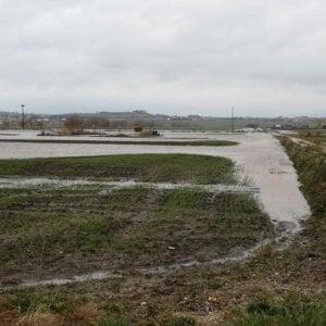 Pioggia e vento nel Barese: allagati centinaia di ettari di campi. Denuncia di Coldiretti