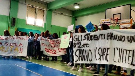 """Studentessa bullizzata perché femminista, i compagni con gli striscioni a scuola: """"Stanchi di stare zitti"""""""
