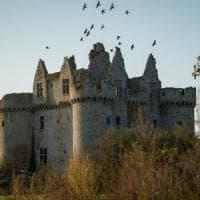Bari-Nantes la nuova rotta EasyJet per la scoperta dei castelli della Loira