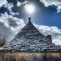Neve in Puglia, la campagna di Noci sembra incantata