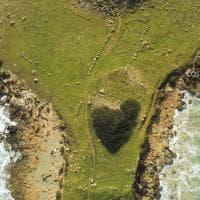 In Salento anche i cespugli hanno la forma del cuore