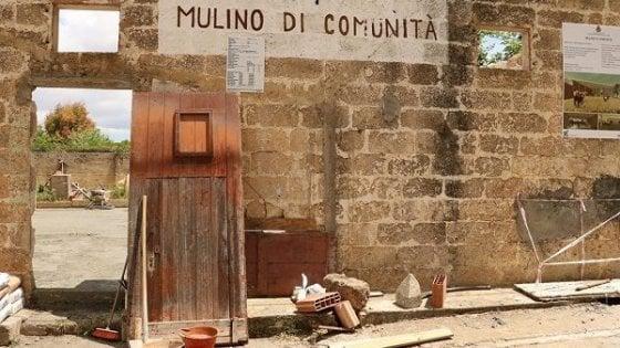 In Puglia nasce il primo 'mulino di comunità': permetterà a tutti di produrre farine di qualità a costi equi