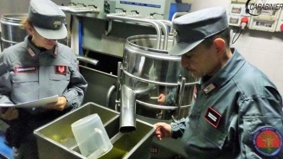 """Olio di soia spacciato per extravergine, 24 indagati a Foggia: """"Venduto a noti ristoranti"""""""