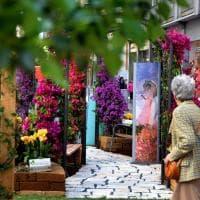 Bari, il centro è un giardino: in via Argiro esplode la primavera
