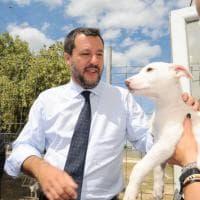 Salvini visita il canile di Bari, in posa anche con i cuccioli