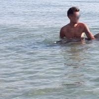 Brindisi, i bagnanti 'salvano' delfino ferito da una barca. I veterinari