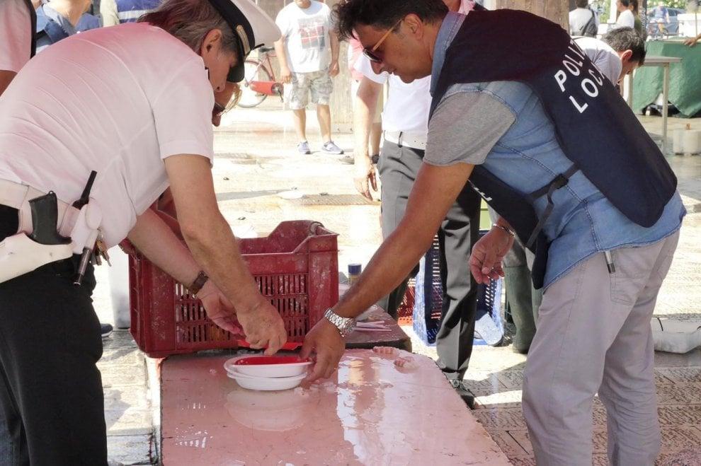 Bari, blitz al mercato del pesce del molo San Nicola: sequestrata tutta la merce