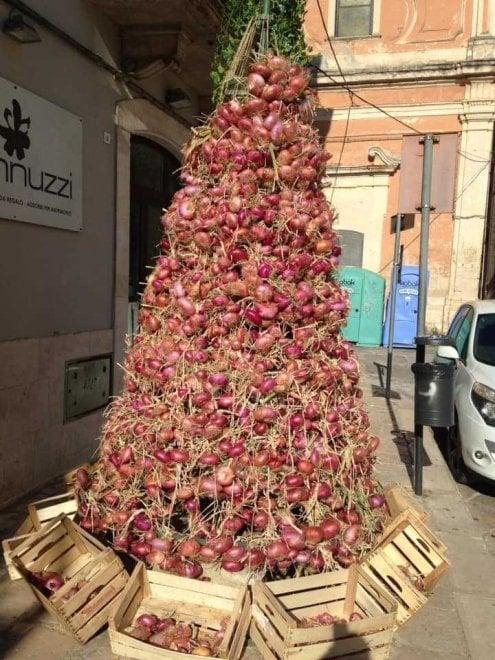 Acquaviva, l'albero di Natale è una composizione di cipolle raccolte dalla cooperativa di migranti