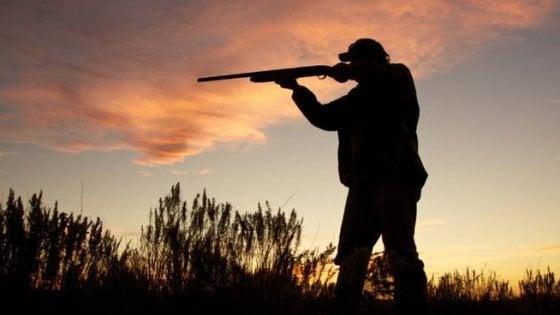 Il Consiglio di Stato autorizza la caccia in Puglia ma con limitazioni per le specie protette