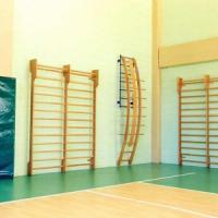 Foggia, prof di educazione fisica bacia sulla guancia alunna delle medie: condannato per...