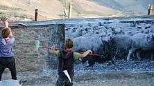 Foggia, street art e foto  contro lo spopolamento