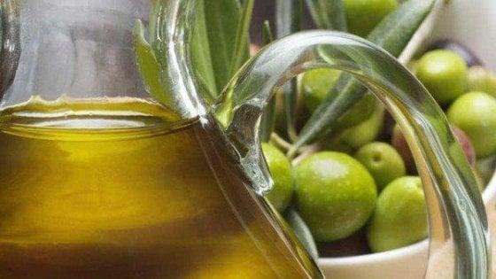"""In Puglia l'invasione dell'olio straniero. Coldiretti: """"Nei depositi pronti 9 milioni di chili"""""""