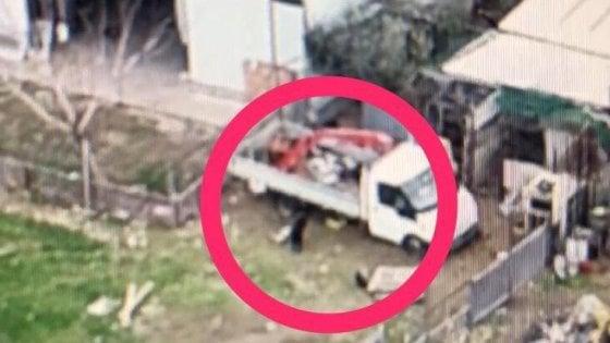 Pantera in libertà nel Foggiano, anche i Predator dell'Aeronautica militare per stanarla