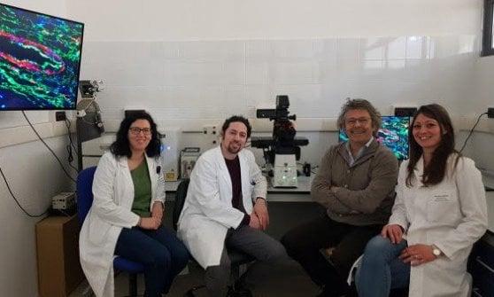 Cancro a colecisti, ricercatrice precaria scopre meccanismo che blocca i rifornimenti alle cellule malate