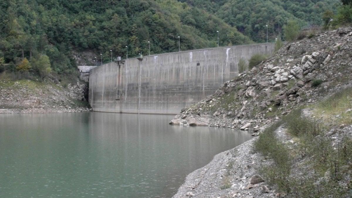 Puglia, allarme siccità: in un anno dimezzata l'acqua negli invasi. Coldiretti: