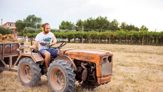 """Adotta un contadino,  petizione per salvare gli agricoltori dalla crisi-Covid: """"Acquistiamo da loro"""""""