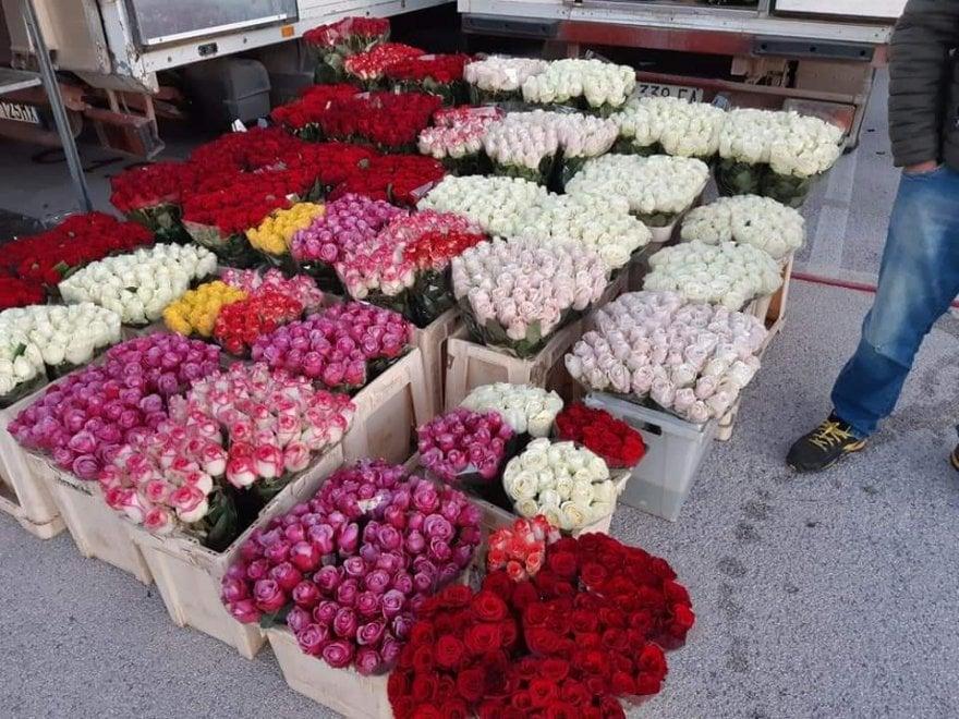 """Fase 2, riapre mercato dei fiori di Terlizzi: il più venduto è la rosa rossa. """"Stop a vendite illegali"""""""