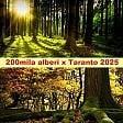 """Duecentomila alberi  per Taranto, la proposta  di Legambiente: """"Uno per  ogni abitante entro il 2025"""""""
