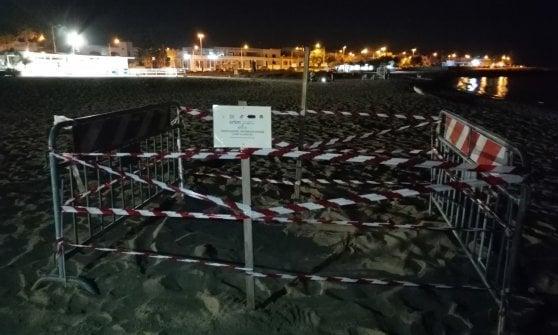 Salento, tartaruga depone le uova durante una festa in spiaggia: gruppo di ragazzi la vede e chiede aiuto