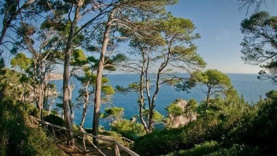 """Isole Tremiti, dimezzati i posti sui traghetti, il sindaco scrive al premier: """"Molti turisti non riescono a partire"""""""