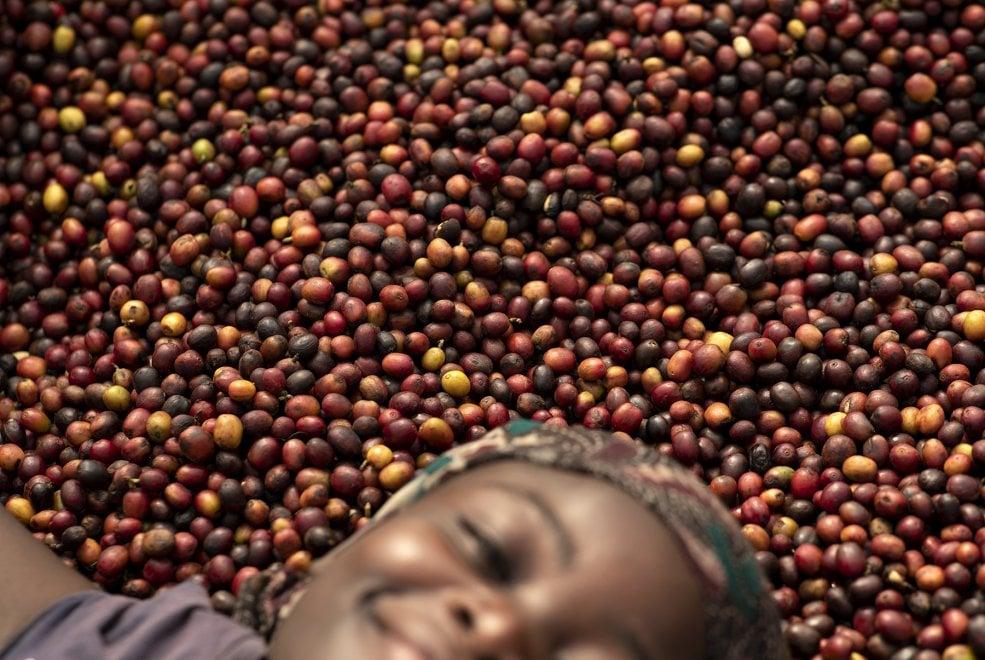 """Flavio&Frank ritraggono le donne del caffè in Uganda: """"Un mondo che cambia"""""""