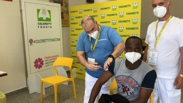"""In Puglia al via le vaccinazioni anti Covid per i braccianti stranieri. Coldiretti: """"Una garanzia di sicurezza"""""""