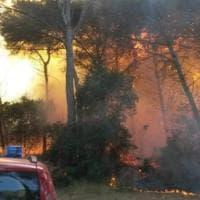 Otranto, dopo 48 ore spento l'incendio intorno agli Alimini: paura nel paradiso