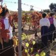 Coldiretti, in Emilia-Romagna è rosa 1 impresa agricola su 5