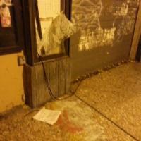 Bologna blindata per Renzi, I collettivi protestano: uova contro la polizia, danneggiata...