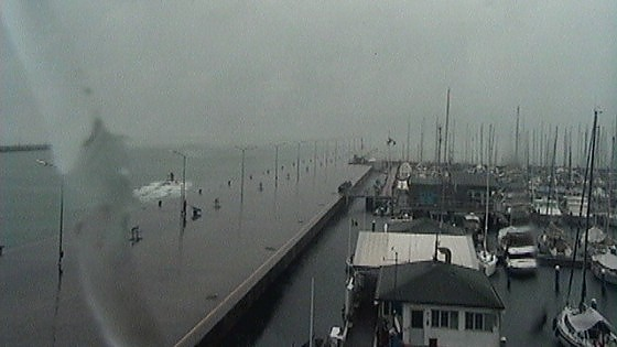 Collisione al largo di Marina di Ravenna, nave affonda: due morti e quattro dispersi