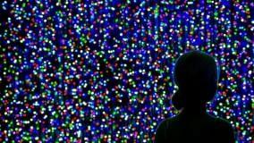 Teatro, cinema, letture nel week end    Laboratori di luce in Sala Borsa Ragazzi