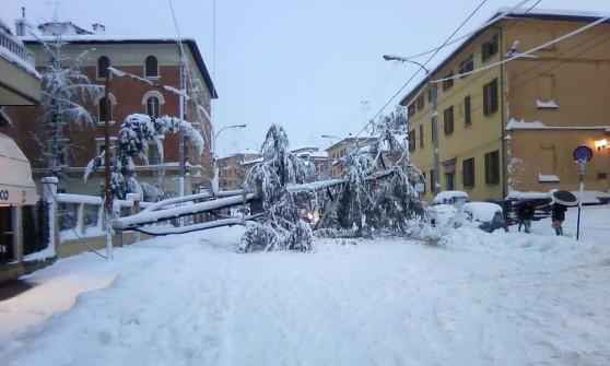 Neve: disagi in A1 e A13, treni in ritardo. Aeroporto riaperto, 21 voli cancellati. Otto bloccati in fuoristrada