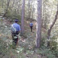 Cacciatore trova nel bosco un arsenale per l'assalto a portavalori