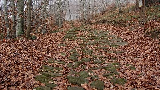 Flaminia Militare, quel percorso dimenticato scoperto da due archeologi a tempo perso