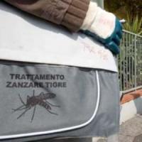 Il porta a porta per sconfiggere la zanzara tigre