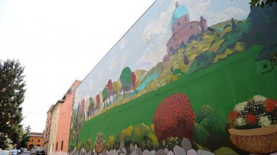"""""""Quel muro grigio adesso è una bella collina verde"""". Grazie al sogno di un condòmino"""