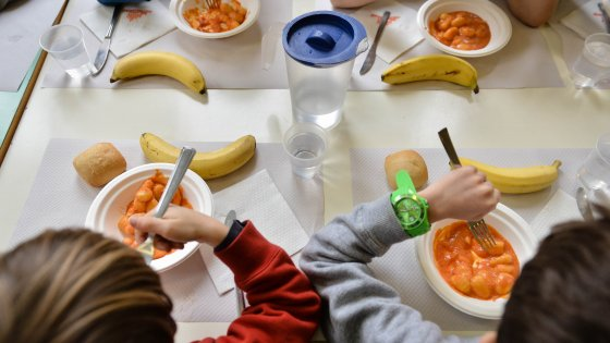 """Bologna, il neuropsichiatra contro il menù vegano a scuola: """"Si rischia molto pure l'anoressia"""""""