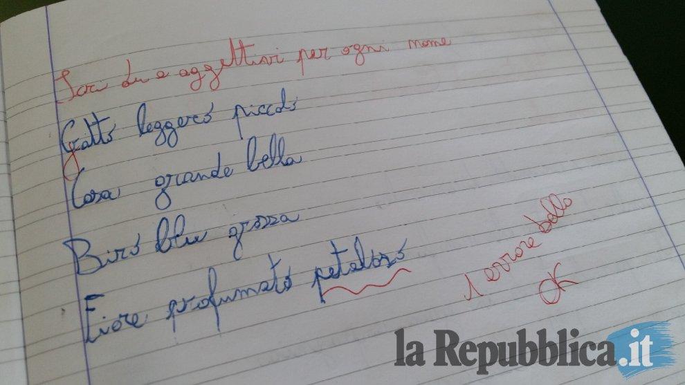 """Ecco come è nato #petaloso: sul quaderno di Matteo """"un errore bello"""". Alla maestra un dono speciale"""