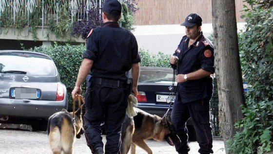 Bologna, cani antidroga a scuola: il pm striglia le famiglie
