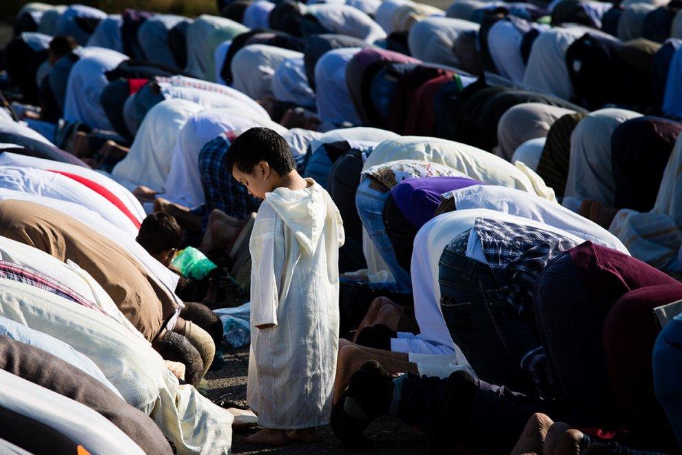 """Bologna, in Comune una mostra sulla comunità musulmana: """"Venite a conoscerci"""""""